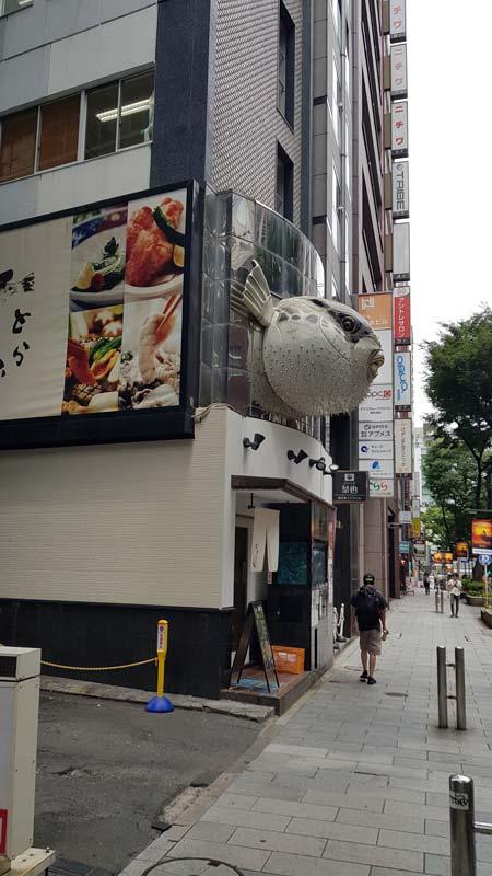 Lionel Turpin – Torafugutei, restaurant de fugu, quartier de Shibuya à Tokyo